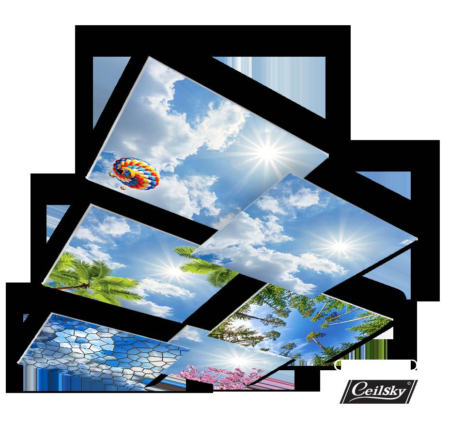 Fotoplafond luchtplafond foto in plafond